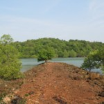 8.5+ Rai Land in Koh Yao Noi Island for sale ID.19PL119 8