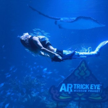 Thailand's Largest Aquarium Also Has The World's Largest Underwater Restaurant 5